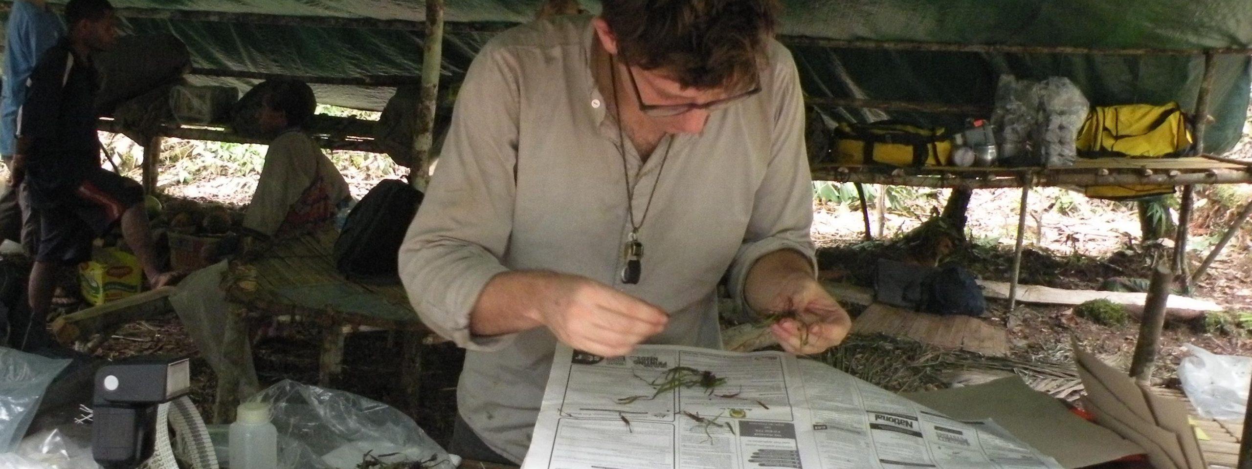 Molecular systematics and biodiversity inventories